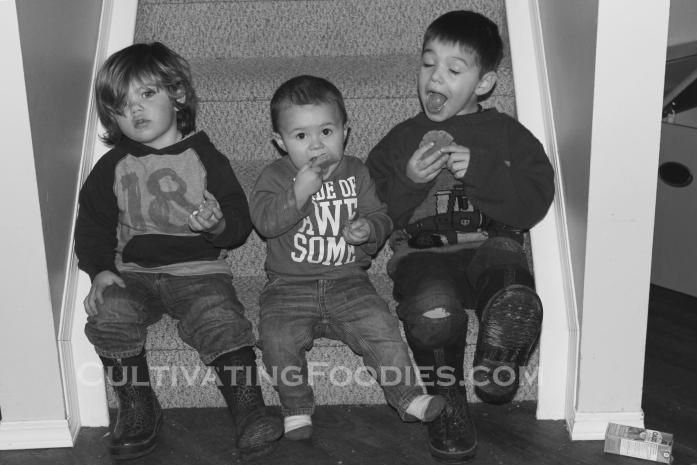 little boys eating cookies wm.jpg